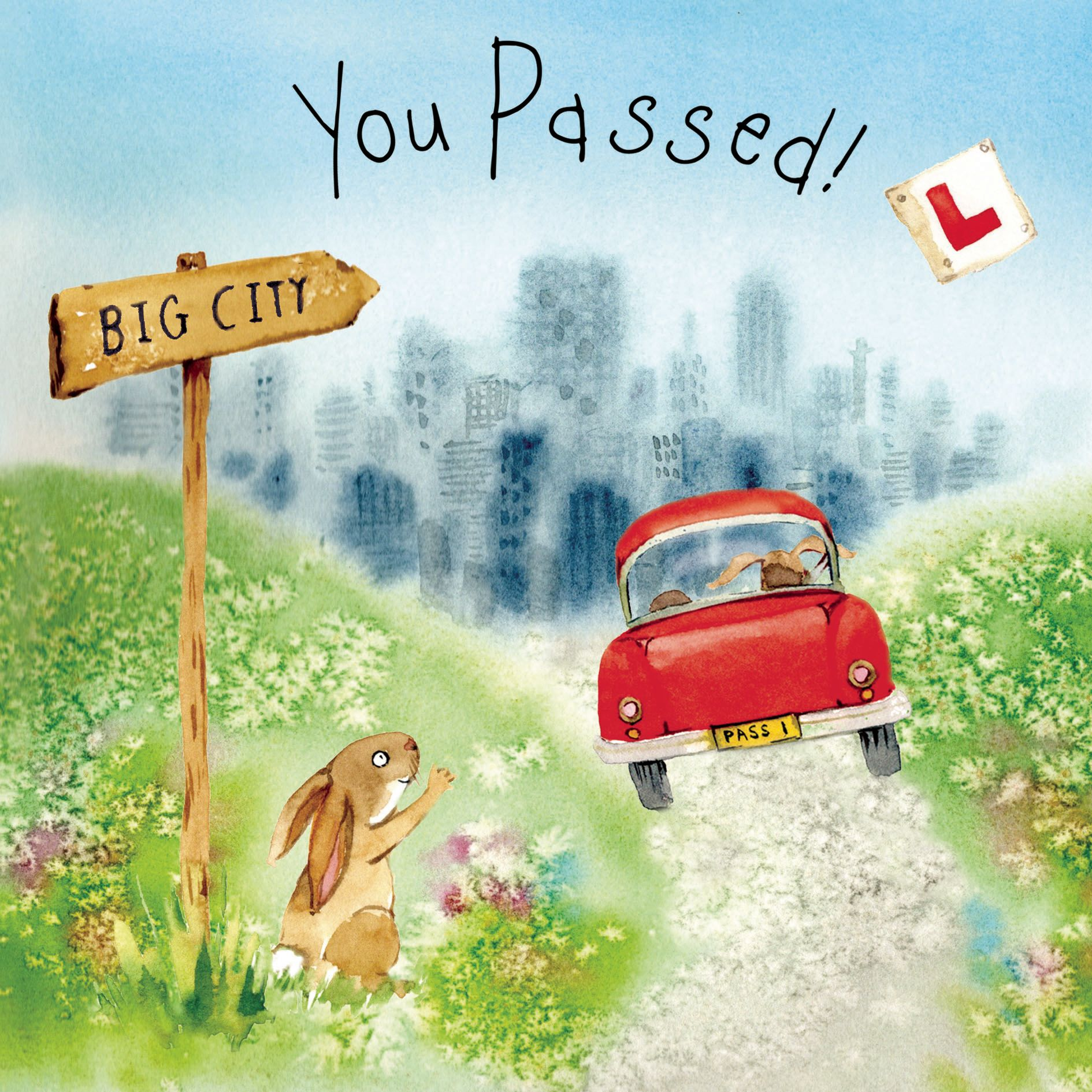 FIZ45 – Congratulations You Passed Your Driving Test Card
