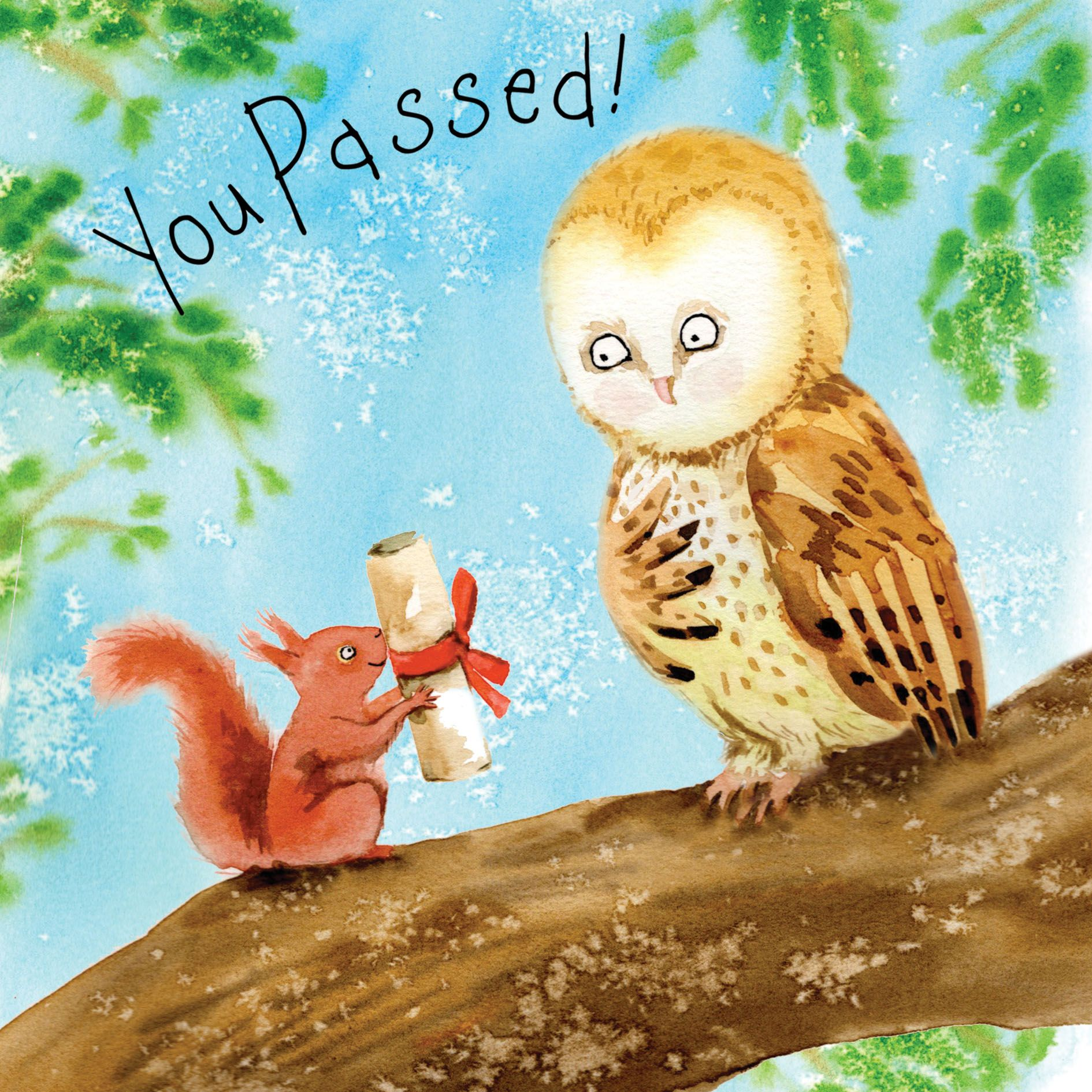 FIZ46 –You Passed Your Exams Congratulations Card
