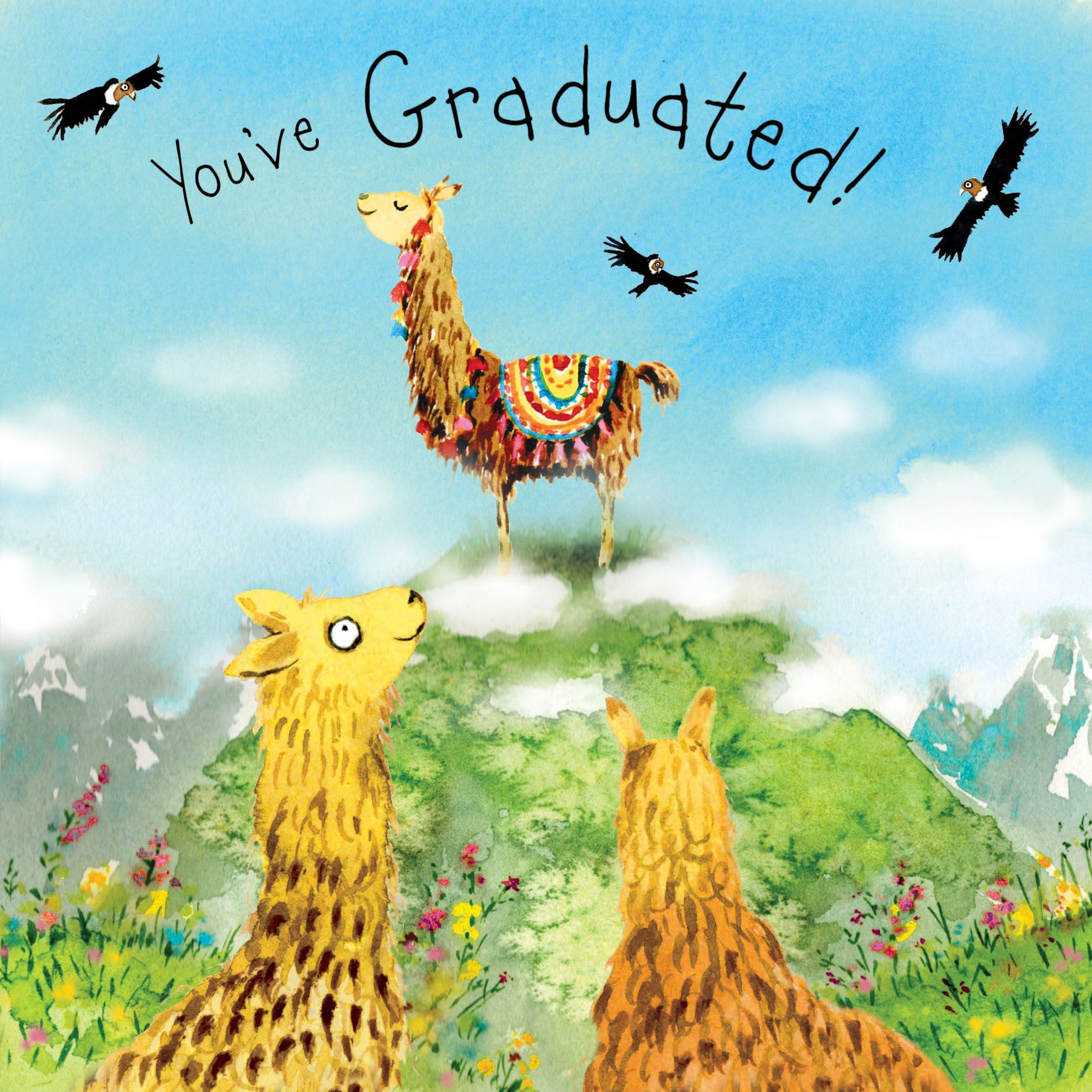 FIZ47 – Congratulations on Your Graduation Card